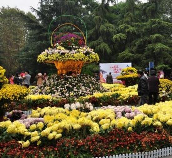 公园菊展设计施工