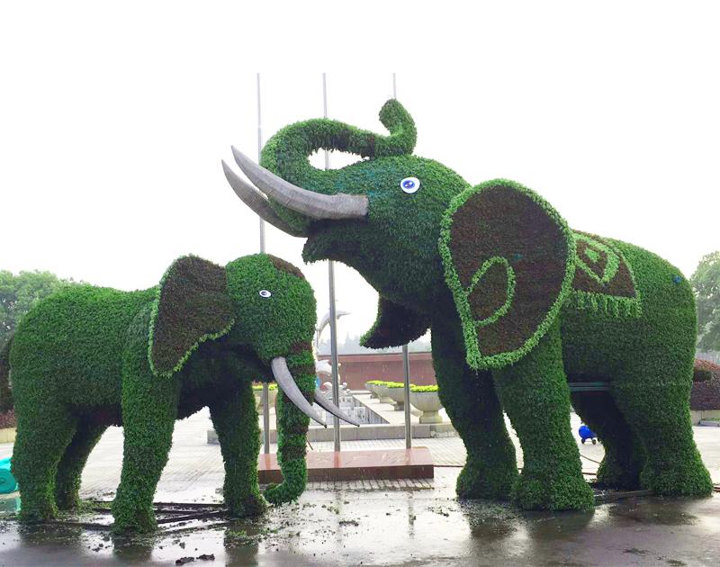 武汉动物园-母子象